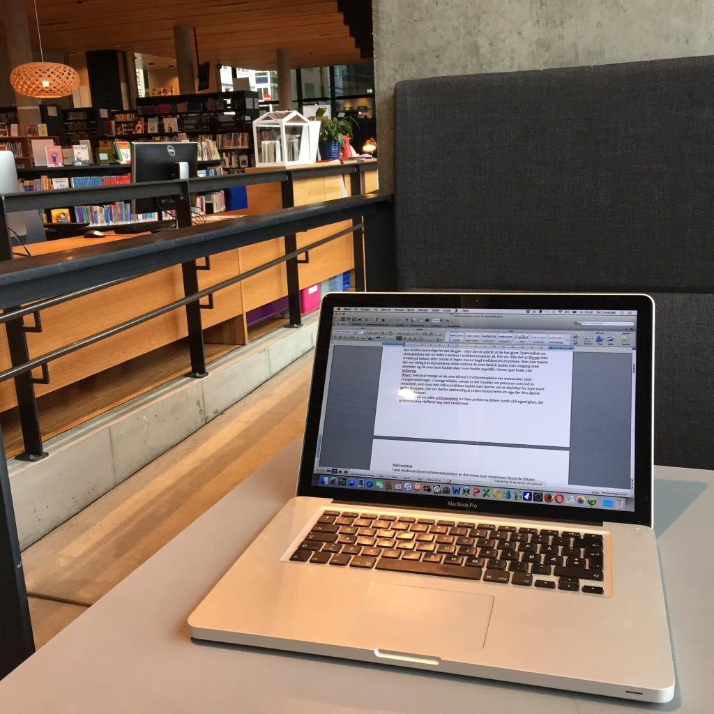 Hamar_mars 2016_Hamar bibliotek_05